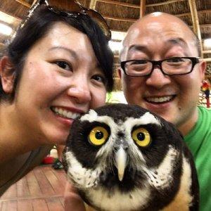 nittha.owl