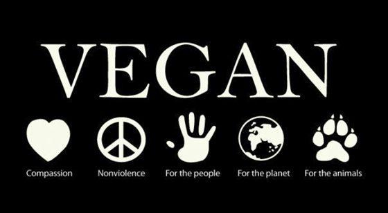 vegan.compassion.nonviolence