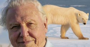 sir-david-attenborough-the-hunt-main
