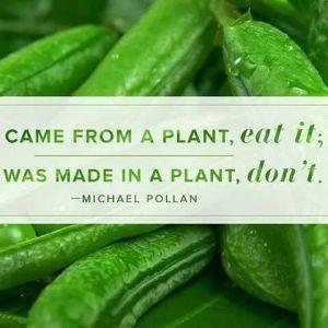 michael-pollan