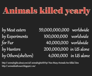 animals.killed.yearly