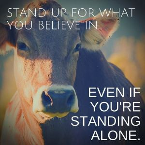 stand.up.for.what.you.believe.in